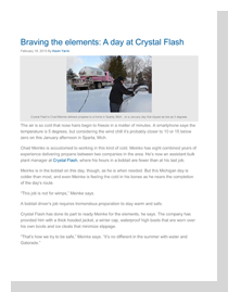 LPG-Crystal-Flash-article---Braving-the-elements-1 thumb